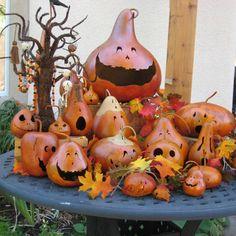 Jack-O-Lantern Orange Natural Halloween Carved Trick or Treat Gourd