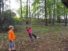 Rope swing Single Mum, Rope Swing, Cumbria, Lake District, Childhood Memories, Woodland, Castle, Gardens, Outdoor
