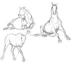 Neets | Quick horse sketches
