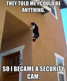 they-said-i-could-be-anything-so-i-became-a-security-camera