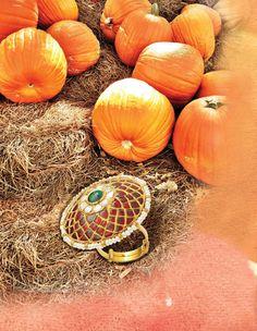 #nayaab #stories #fairytales #happilyeverafter #jewellery #jaipur #mumbai #pumpkins #charriot