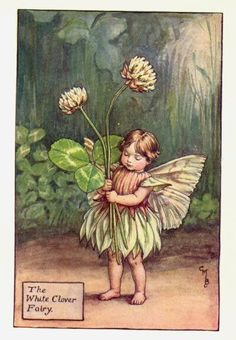 White+Clover+Flower+Fairy+Print+c.1927+Fairies+by+Cicely+Mary+Barker