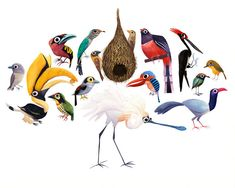 Brendan Wenzel's collection of birds. Colour and character in spades.