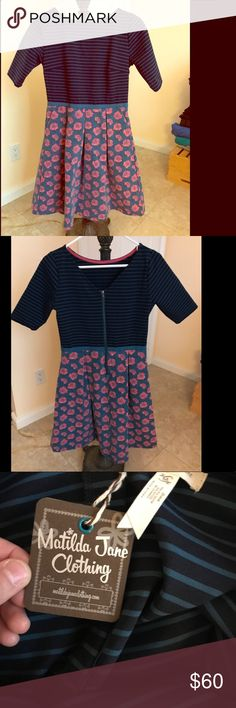 nwt - MATILDA JANE dress amazing material / stretchy, soft, thick / pleats for fitted shape Matilda Jane Dresses Midi