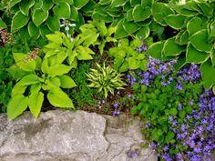 Astrid's Garden Design: July 2012