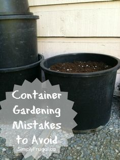 Here are 5 container gardening mistakes to avoid. | via @Taya (SimplyFrugal)