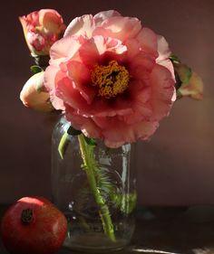 Florali-tree-peony