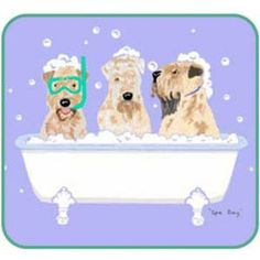 Spa Day Awesome Dogs, Cute Dogs, Doggies, Dogs And Puppies, Dog Template, Spa Art, Zoo Keeper, Wheaten Terrier, Animal Antics