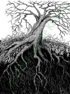 21 ideas tree roots drawing artists for 2019 Christmas Tree Silhouette, Pine Tree Silhouette, Roots Drawing, Paper Palm Tree, Willow Tree Wedding, Weeping Cherry Tree, Oak Tree Tattoo, Picture Tree, Celtic Tree Of Life