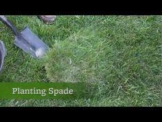Top 5 Gardening Tools Every Gardener Should Have