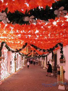 Festas de Campo Maior, Alentejo, Portugal! (Street paper flowers decoration during Campo Maior festivities)