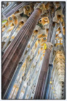 la basilica de la Sagrada Familia  Barcelona, Spain