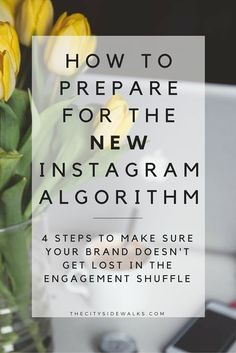 """Instagram is shaking things up and changing the algorithm to favor engagement. Don't panic just yet. Adjust and adapt! Here are 4 steps to prepare for the """"New Instagram"""" as it rolls out to make sure you don't get lost in the shuffle."""