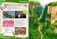 Projecten voor basisscholen  Brazilië M.I. Natuur 1 daanebbers.yurls.net