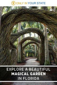 Visit Florida, Florida Living, Florida Vacation, Florida Travel, Vacation Places, Vacation Trips, Travel Usa, Florida Trips, Sarasota Florida