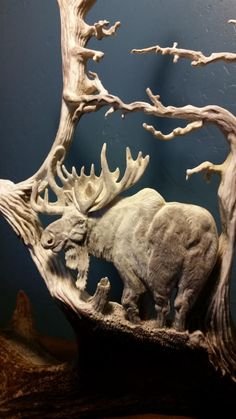 Unique antler carvings and scrimshaw of wildlife scenes in ...