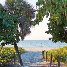 8 Reasons We Love Sanibel Island, Florida - Coastal Living