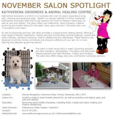 Salon Spotlight November 2012, Kathverena Groomers and Animal Healing Centre