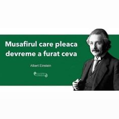 Einstein, Funny Pics, Funny Pictures, Knowledge, Humor, Nice, Quotes, Movies, Movie Posters