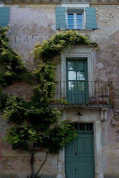 vert...Goult, Vaucluse, Provence, France