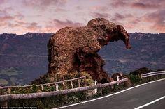The+Elephant+Rock+of+Castelsardo