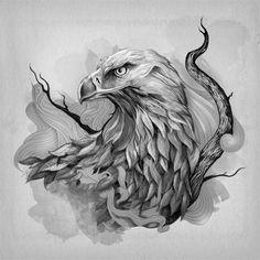 Eagle drawings.