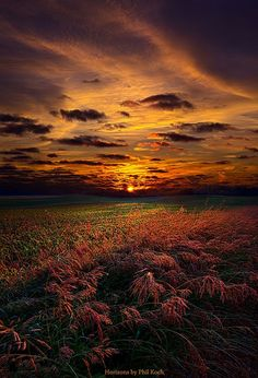 Sunset at the Field ~ Marvelous Nature