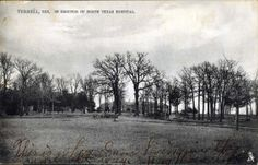 """Gracia wrote from the North Texas Hospital (in either 1908 or 1918; the postmark is incomplete): """"This is where I am living in the same old way.  Bug house life.""""  The black-and-white photograph, evidently taken in the winter when the trees were bare, provides a striking visual."""