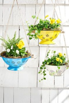 Creative DIY Garden Planters Hang spring flowers in brightly colored colanders for an unexpected and truly unique way to update your porch.Hang spring flowers in brightly colored colanders for an unexpected and truly unique way to update your porch. Unique Garden, Colorful Garden, Tropical Garden, Diy Hanging Planter, Hanging Basket, Garden Planters, Basket Planters, Planter Ideas, Balcony Garden