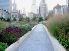 Gardening with Perennials. Aprendiendo de Chicago | El Blog de La Tabla