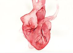 Title #6 Watercolor real heart .