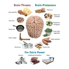 Brain Threats and Protectors/brain foods