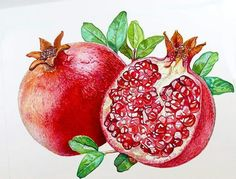 Health Benefits of Pomegranate Nutrition - Pomegranate health benefits - Pomegranate is fruit with a red color that turns out to have a lot of nutritional content. Avocado nutrition is very useful f Grenade Fruit, Home Remedies, Natural Remedies, Pomegranate Fruit, Pomegranate Benefits, Pomegranate Extract, Pomegranate Varieties, Fruit Benefits, Health Foods