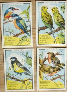 Vintage kwartet dieren, 7 x 10,5 cm, 24 stuks, hobbymateriaal, spelonderdelen by LabelsAndMore on Etsy