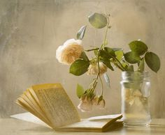 Flower Art Print featuring the photograph Enjoying A Rainy Day by Delphine Devos
