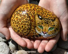 My hand painted rocks are carefully selected from the beautiful wave washed beaches of South Wales. This beautifully hand painted JAGUAR ROCK Painted Rock Animals, Painted Rocks Craft, Hand Painted Rocks, Painted Stones, Pebble Painting, Pebble Art, Stone Painting, Painting Art, Rock Painting Patterns