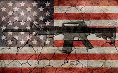 FEB 22/18  (What surely we will hear from die hard NRA supporters.) By Linda Hammerschmid