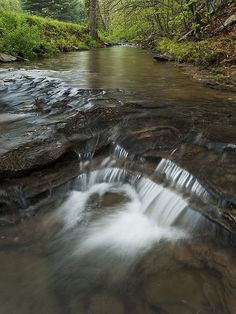 Spring Creek, Shawnee State Forest Scioto County, Ohio, USA