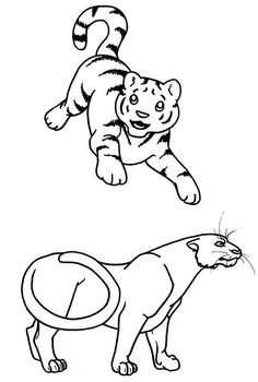 tiger cub coloring pages - photo#25