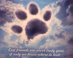 Thank you Lily for letting mom know that your ok and at peace we really miss you so much