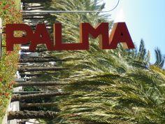 Palma sign