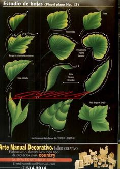 One-Stroke Leaves