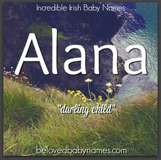 Alana is the most popular spelling of this name but there are three spellings in the top 1000: Alana, Alanna, and Alannah. It's on a bit of a downturn but I still think it captures a lot of what modern American parents are looking for in a name these days: popular sound, nickname friendly, and a cute meaning. Alana is a feminine form of Alan. It makes a great honor name for a dad named Alan because its ties are obvious but its sound is very different so there's no confusion.