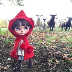 """Look out little Red Riding Hood.... beware of the wolf in sheep's clothing !"" #littleredridinghood  #aesop  #ransilentnight  #sheep  #red #hanon #dakawaiidolls  #nature  #field #kawaii  #blythedoll  #dollphotography  #ootd #blacksheep by dollytreasures"
