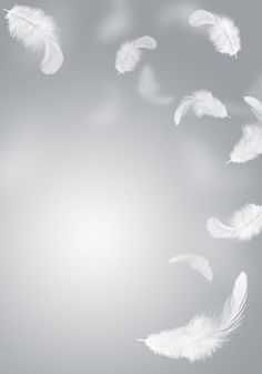 Feather Background, Smoke Background, Background Images, Feather Wallpaper, White Wallpaper, Flower Wallpaper, Photo Backgrounds, Wallpaper Backgrounds, Aesthetic Iphone Wallpaper