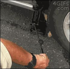Tire changer helper. | 12 Funny Cat GIFs (Plus A Bonus Video)