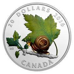 Designed by Canadian artist Maurice Gervais, this coin captures the delicate beauty of a snail in the Canadian landscape. Canadian Things, Canadian Artists, Gold And Silver Coins, Silver Bars, Canadian Gold Coins, Custom Coins, Ancient Roman Coins, Mint Coins, Canada