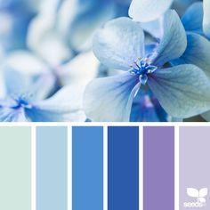 いいね!1,523件、コメント15件 ― Jessica Colaluca, Design Seedsさん(@designseeds)のInstagramアカウント: 「today's inspiration image for { flora blues } is by @j_tolstrup ... thank you, Jette, for sharing…」