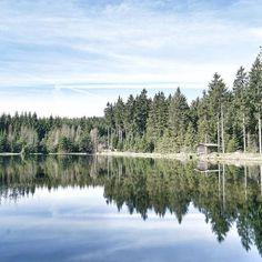 Ein Bilderbuchsee  Gefunden im Vogtland mitten im Wald - ein Traum! #liliesdiarytravel