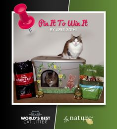 Looks like a plastic storage bin that's been painted & has a hole cut out for access. You could put the hole up higher so they don't kick the litter out of it. Cute idea!    Pin It To Win It! RePin to win a bag of our litter, @By Nature Pet Foods and a custom Karen's Kitty Kommodes litter box!